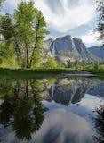 Reflexão da cachoeira de Yosemite na água Imagens de Stock