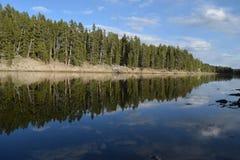 Reflexão da costa do rio Foto de Stock Royalty Free