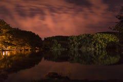 Reflexão da floresta em uma água Imagens de Stock