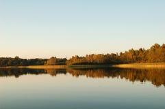 Reflexão da floresta na água Fotografia de Stock Royalty Free
