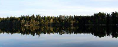 Reflexão da floresta no lago Imagem de Stock