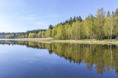 Reflexão da lagoa Imagens de Stock Royalty Free