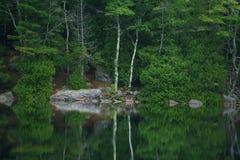 Reflexão da lagoa da bolha Fotografia de Stock