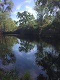 Reflexão da lagoa do país do carvalho Fotografia de Stock Royalty Free