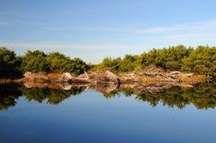 Reflexão da lagoa pequena Foto de Stock Royalty Free