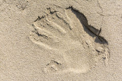 Reflexão da mão na areia Foto de Stock