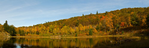 Reflexão da manhã no lago Fotos de Stock Royalty Free