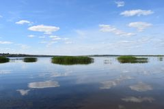 Reflexão da natureza Foto de Stock Royalty Free