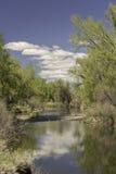 Reflexão da nuvem da lagoa do céu azul fotografia de stock royalty free