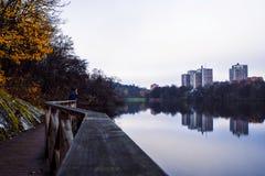 Reflexão da paisagem do outono foto de stock
