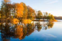 Reflexão das árvores da queda na água Imagens de Stock