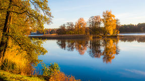 Reflexão das árvores da queda na água Imagem de Stock Royalty Free