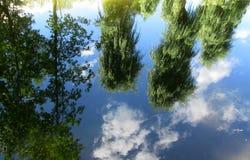 Reflexão das árvores e de um céu do verão Imagem de Stock Royalty Free