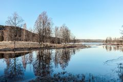 reflexão das árvores no lago no inverno Foto de Stock
