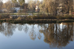 Reflexão das árvores no rio Foto de Stock Royalty Free