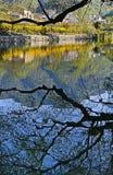 reflexão das cabanas Fotografia de Stock Royalty Free