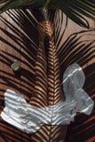 Reflexão das folhas de palmeira no corpo Imagens de Stock