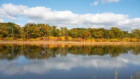 Reflexão de árvores multicoloridos do outono no lago Fotografia de Stock Royalty Free