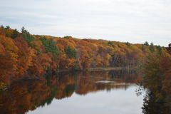Reflexão de Fall River fotografia de stock royalty free