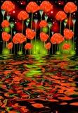Reflexão de flores da papoila na água Fotografia de Stock