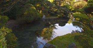 Reflexão de jardins de chá japoneses Foto de Stock Royalty Free