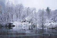Reflexão de um Central Park nevado fotografia de stock