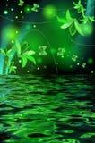Reflexão de um lírio com borboletas Imagem de Stock
