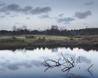 Reflexão do amanhecer no lago pequeno com o quebrado do ramo imagem de stock royalty free