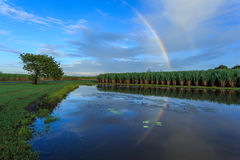 Reflexão do arco-íris Fotografia de Stock