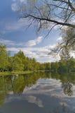 Reflexão do céu na lagoa Fotos de Stock Royalty Free