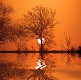 Reflexão do crepúsculo Fotografia de Stock