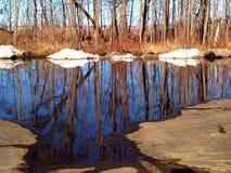 Reflexão do derretimento do inverno fotografia de stock