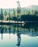 Reflexão do esconderijo Fotografia de Stock Royalty Free