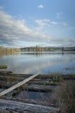Reflexão do lago Cheadle Fotografia de Stock Royalty Free