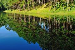 Reflexão do lago em Pang Ung Forestry Plantations, Maehongson imagem de stock royalty free