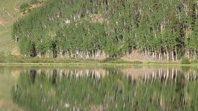 Reflexão do lago mountain video estoque