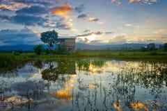 Reflexão do nascer do sol Fotografia de Stock