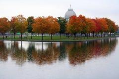 Reflexão do outono imagens de stock