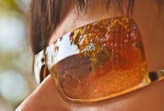 Reflexão do parque do outono nos óculos de sol fotografia de stock
