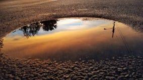 Reflexão do por do sol Imagem de Stock Royalty Free
