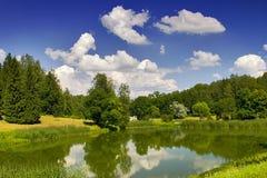 Reflexão do verão Fotos de Stock Royalty Free