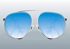 Reflexão dos óculos de sol Ilustração Stock