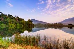 Reflexão dos montes e do verde Fotografia de Stock