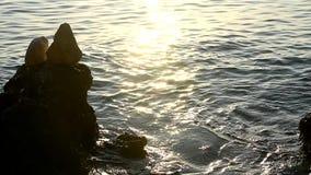 Reflexão dos raios do por do sol na água do mar no por do sol vídeos de arquivo