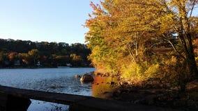 Reflexão dourada do lago da luz do sol foto de stock