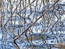 Reflexão em uma superfície da água fotografia de stock royalty free