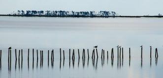 Reflexão na água Fotos de Stock