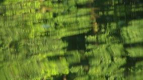 Reflexão na água vídeos de arquivo
