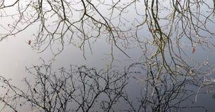 Reflexão na água Imagens de Stock Royalty Free
