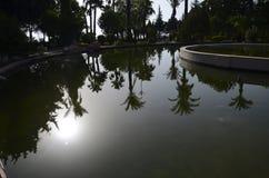 Reflexão na água Imagem de Stock Royalty Free
